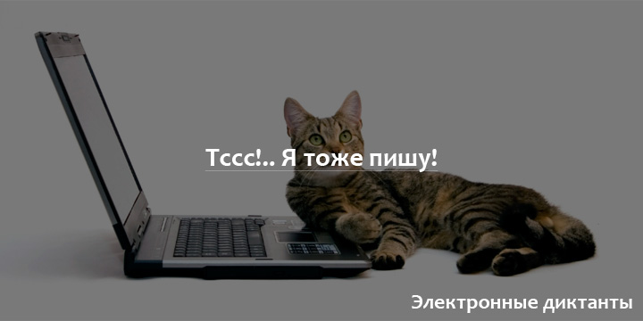 Электронные диктанты по русскому. Бесплатно